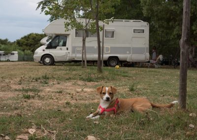 sosta-camper-gallipoli-8